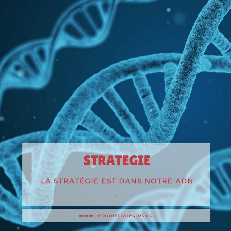 adn strategie agence montréal agence web agence stratégie marketing